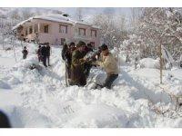 VEDAŞ ekipleri Şemdinli'de kar mesaisinde