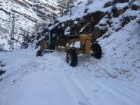 Şırnak'ta çığın düştüğü bölgelerde yol açma çalışmaları sürüyor