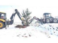 Altıntaş'ta ağaçlandırma çalışmaları aralıksız devam ediyor