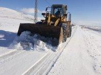 Kuzey ilçelerinde karla mücadele