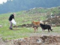 Jandarma ve polis kısıtlamada sokak hayvanlarını unutmadı