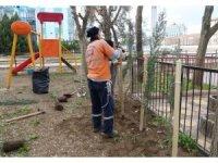 Turgutlu Belediyesinden Mimar Sinan Parkında ağaçlandırma çalışması