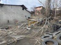 Şiddetli rüzgar ağacı kökünden söktü