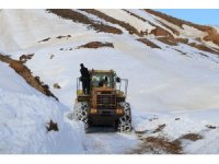20 günlük kar esaretinin ardından köy yolu ulaşıma açıldı