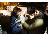 Mermer paletlerin arasına sıkışan kediyi itfaiye ekipleri kurtardı