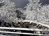 Aydın'da kar yağışı ile kartpostallık görüntüler oluştu