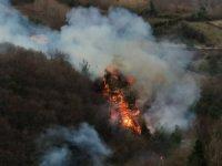 Sinop'taki orman yangını söndürüldü