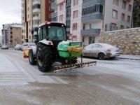Karla mücadele için solüsyonlama çalışma