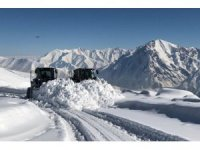 Hakkari'de 234 yerleşim yerinin yolu ulaşıma kapandı