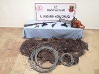 Sinop'ta kablo hırsızlığı