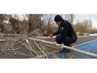 Yola devrilen ağacı polis ekipleri kaldırdı