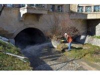 Isparta Belediyesi larva ile mücadele çalışmalarına başladı