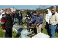 Arıcılara kış uykusundan uyanan arılarla uygulamalı eğitim