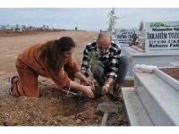Gönüllüler mezarlığı ağaçlandırıyor