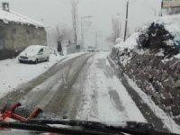Şırnak'ta bahar ve kış bir arada yaşanıyor