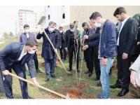 Şanlıurfa'da gençler ilçenin sembolü olan nar fidanını dikti