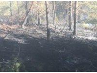 Köyde çıkan yangında 60 arı kovanı kül oldu