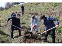 SAMÜ personeli meyve fidanlarını toprakla buluşturdu