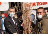 İpek böceği üretimine Diyarbakır Büyükşehir Belediyesinden destek