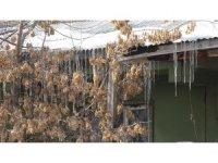 Soğuk hava Ağrı'da etkili olmaya devam ediyor