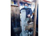 Çanakkale'de zirai don uyarısı