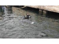 Denizde mahsur kalan kediye nefes kesen operasyon