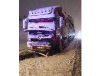 Bitlis'te kar yağışı kazayı da beraberinde getirdi: 1 yaralı