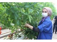 Kendi günlerinde çalışan tarım işçisi kadınlar unutulmadı