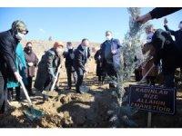 Elazığ'da 11 şehit anısına fidan dikildi