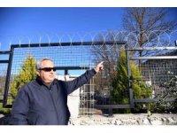 Fethiye Belediyesi'nden Hayvan severleri sevindirecek karar