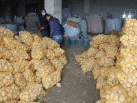 Patates ve soğanlar TMO'ya kaldı