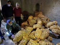 Niğde'den patatesler tırlarla farklı illere gönderiliyor