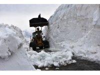 Bahar ayında Bitlis'te 10 metrelik karla mücadele çalışmaları