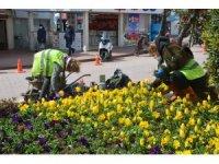 Sinop'ta yaza rengârenk hazırlık