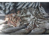 Yasak sonrası balık fiyatları yükseldi