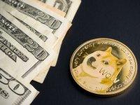 Dolar neden yükseldi, Thodex skandalı etkiledi mi?