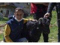 Adem istedi, Başkan Seçer 23 Nisan'da keçi ve oğlak hediye etti