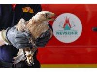 Havalandırma boşluğuna düşen şahini itfaiye ekipleri kurtardı