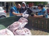 25 çiftçiye kuru fasulye tohumu dağıtıldı