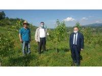 Çataklı, Çaycuma'nın köylerinde tarımsal faaliyetlere baktı