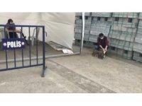 Ağrı'da polis yavru köpekleri sütle besledi