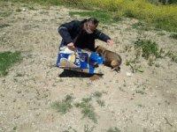 Pelitözü Gölpark'taki hayvanlar ölüme terk edilmedi