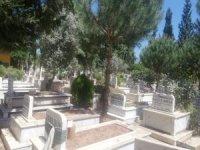 Aydın'da mezarlıklar boş kaldı