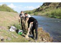 Erciş'te kaçak avlanılan canlı inci kefalleri suya geri bırakıldı