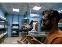 Bursa'da 18 yıldır gözü gibi baktığı kuşu ölünce bakın ne yaptı