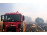 Ömerli'de ağaçlık alanda yangın çıktı, 200 dönümlük alan küle döndü