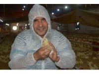 Tavuk yetiştiricilerinden beyaz et şirketlerine mesaj