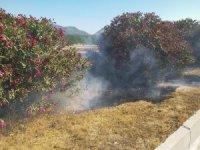 Araçlardan atılan izmaritler yangına sebep oluyor