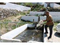 Fabrika işçisiydi kendi balık üretim tesisini kurdu