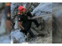 Kayalıklarda mahsur kalan oğlak kurtarıldı
